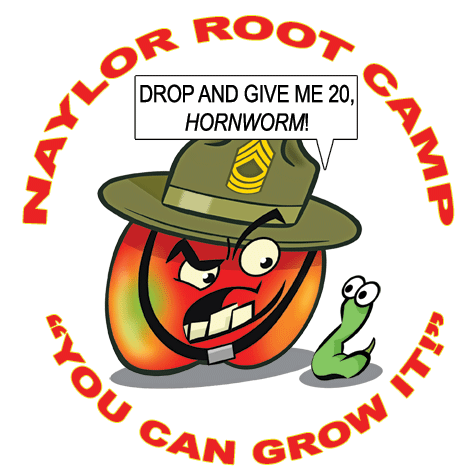 Naylor's Root Camp